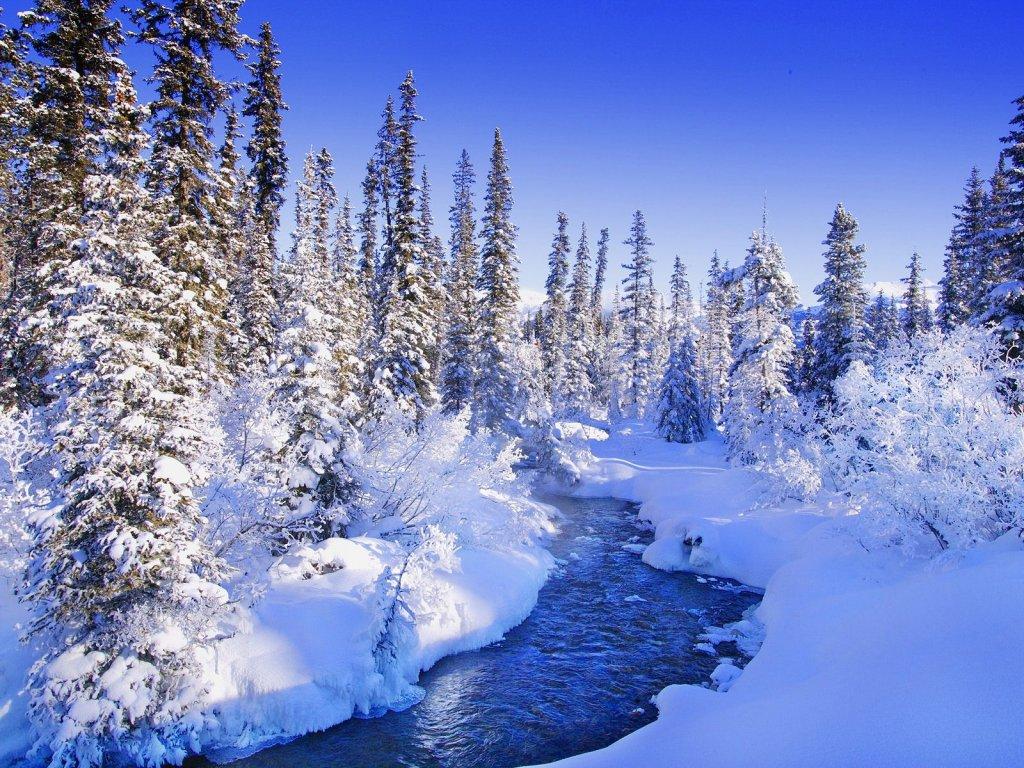 OBRÁZEK : zimni_krajina.jpg
